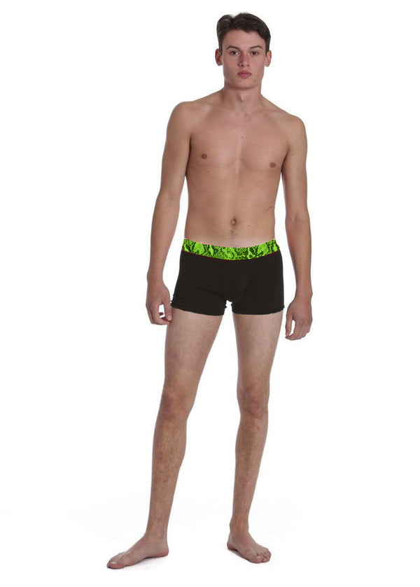 Green Snake Men's Boxer Brief - Related Garments