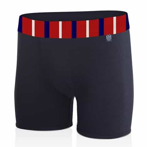 Solid & Striped Boxer Brief