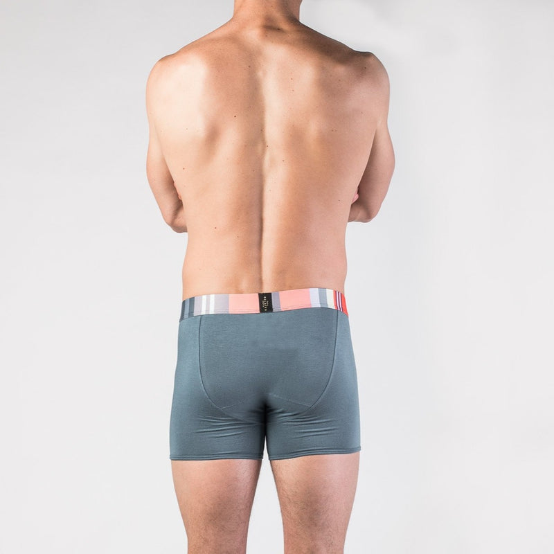The Shield Boxer Brief - Related Garments
