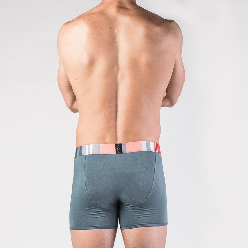 Weekday Boxer Brief 5-Pack - Related Garments