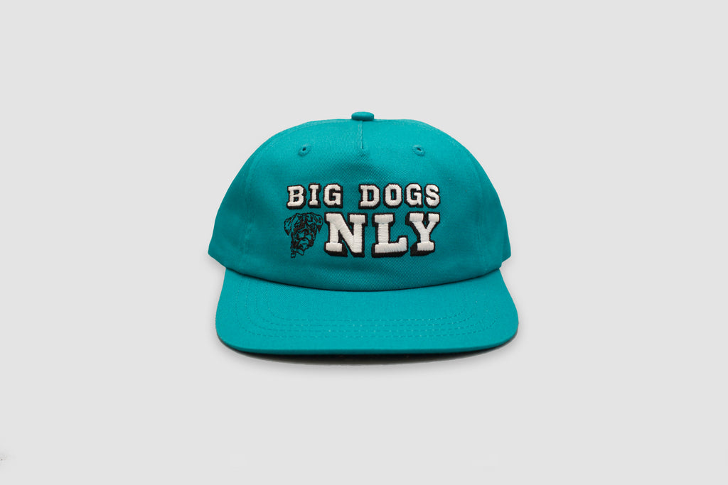 Big Dogs Only Cap - Teal