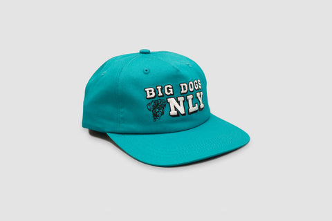 Big Dogs Only Cap - Teal - Oli.