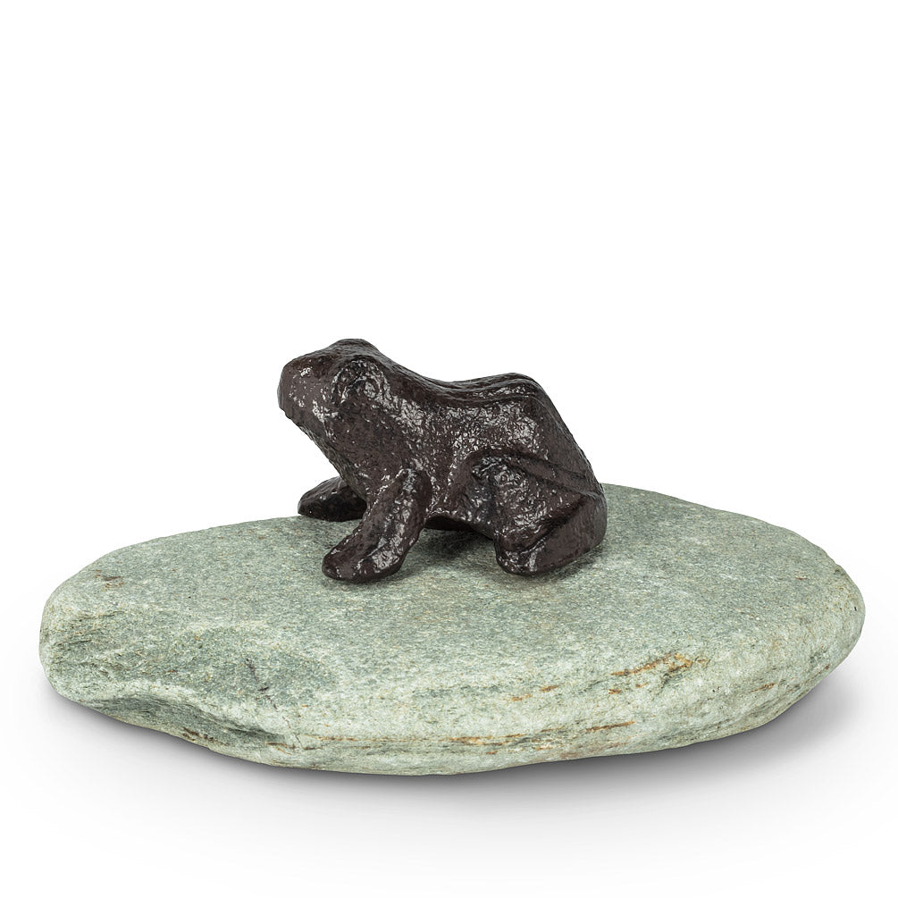 Frog or Turtle on Natural Stone