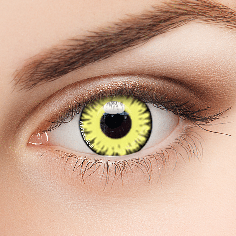 Halloween Style- WhereColour Mystery Egypt Yellow Contacts