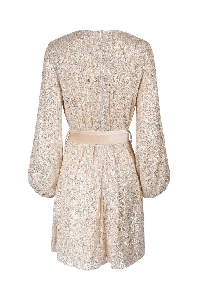 Caiah Sequin Dress - Kjoler