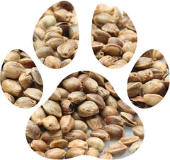 Hemp Seed Oil is an important ingredient in Frankie & Paisley Pet Products