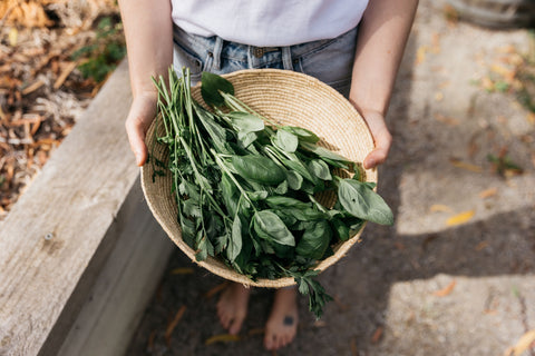 Woman holding out a basket full of vegetables