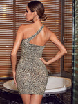One Shoulder Leopard Bodycon Dress