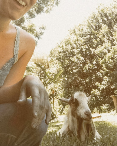 Haley kneels down next to her goat who is laying in the grass in the shade. Haley's hands are stained blue from dyeing with indigo.