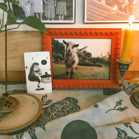 """A photo of a small white and black goat sits in an orange frame on an altar, with a """"death"""" tarot card, a lit beeswax candle and incense."""