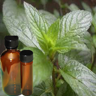 Oil Peppermint - Food Grade