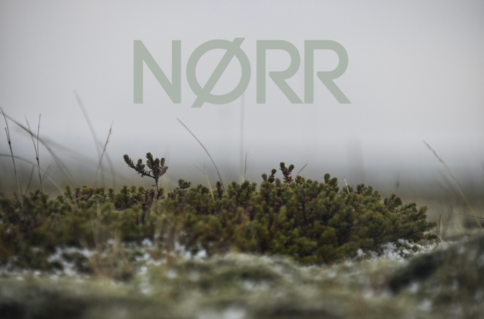 Welcome to NØRR - Nordic Life and Design