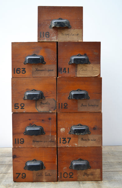 Antique French Herbalist Drawers - SOLD OUT!