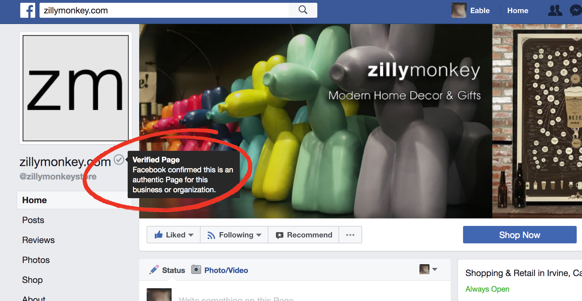 How to Spot a Verified & Authentic Facebook Page