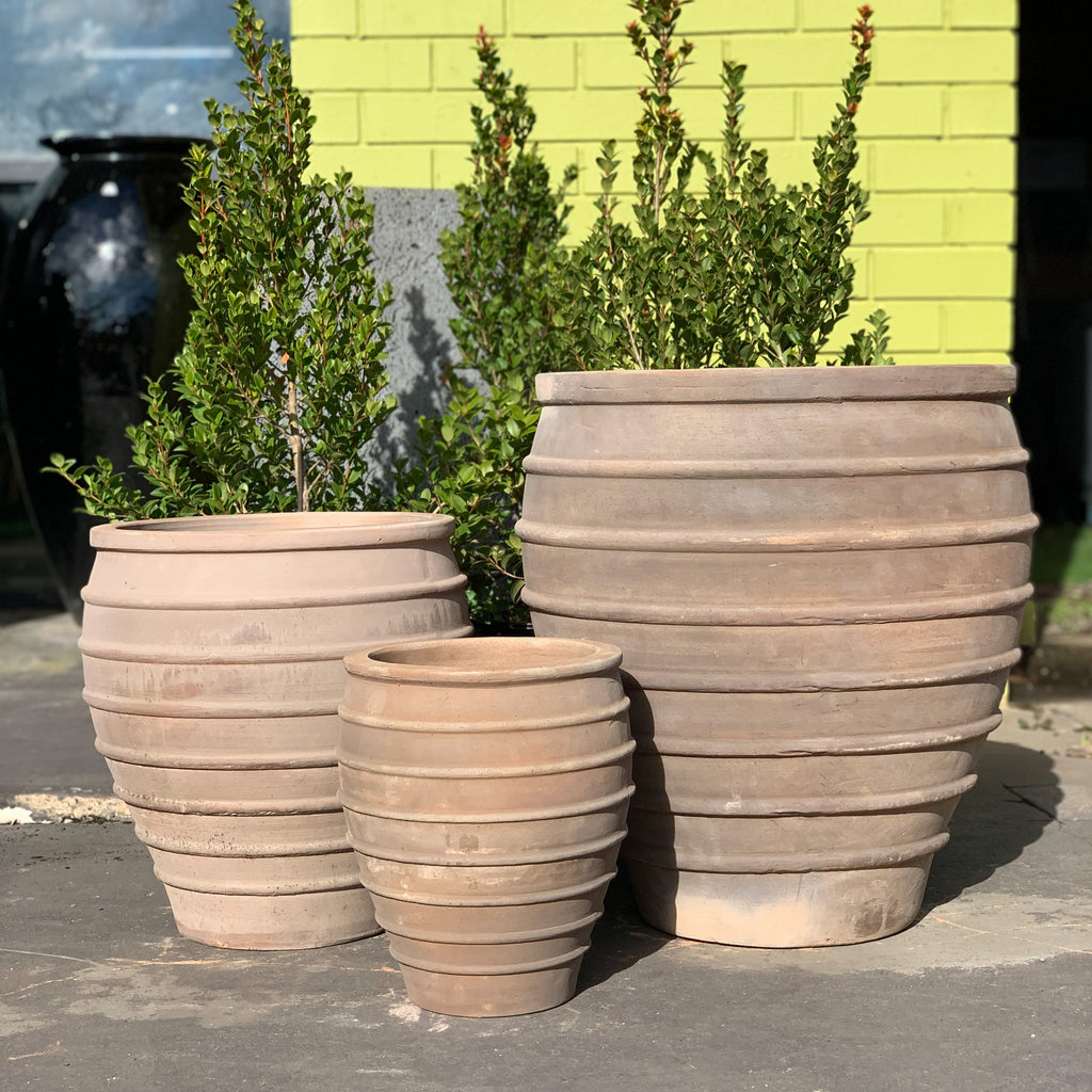 Bee Hive Pot Chocolate Terracotta