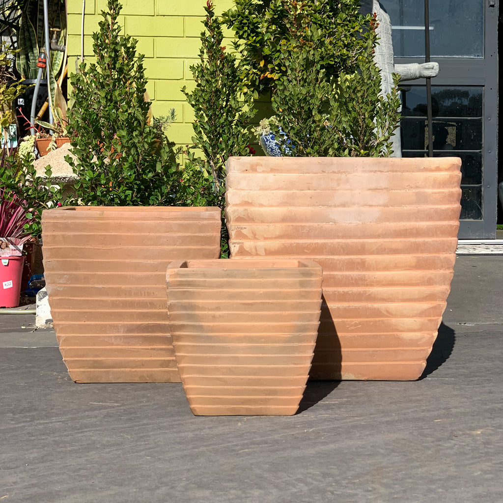 Short Milan Pot Chocolate Terracotta