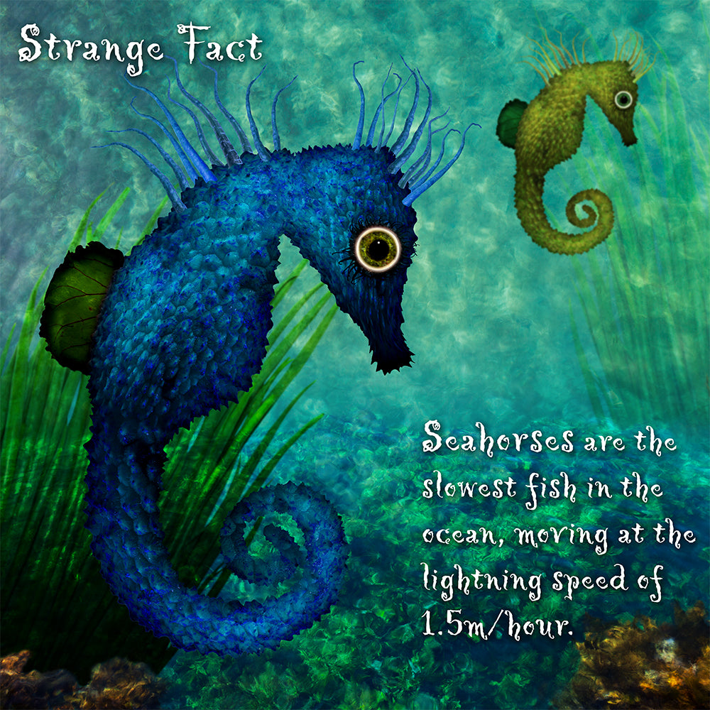 Stealthy Seahorses