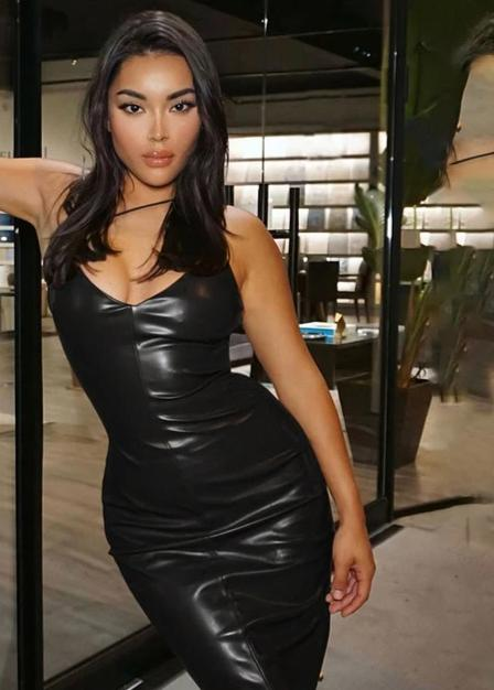 Sheila Faux Leather Dress