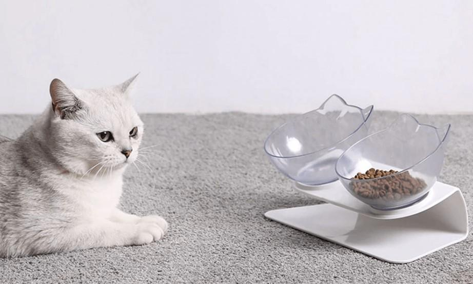 Orthopedic Cat Bowl