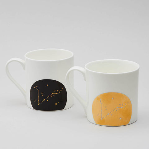 Zodiac Constellation Mug : Pisces