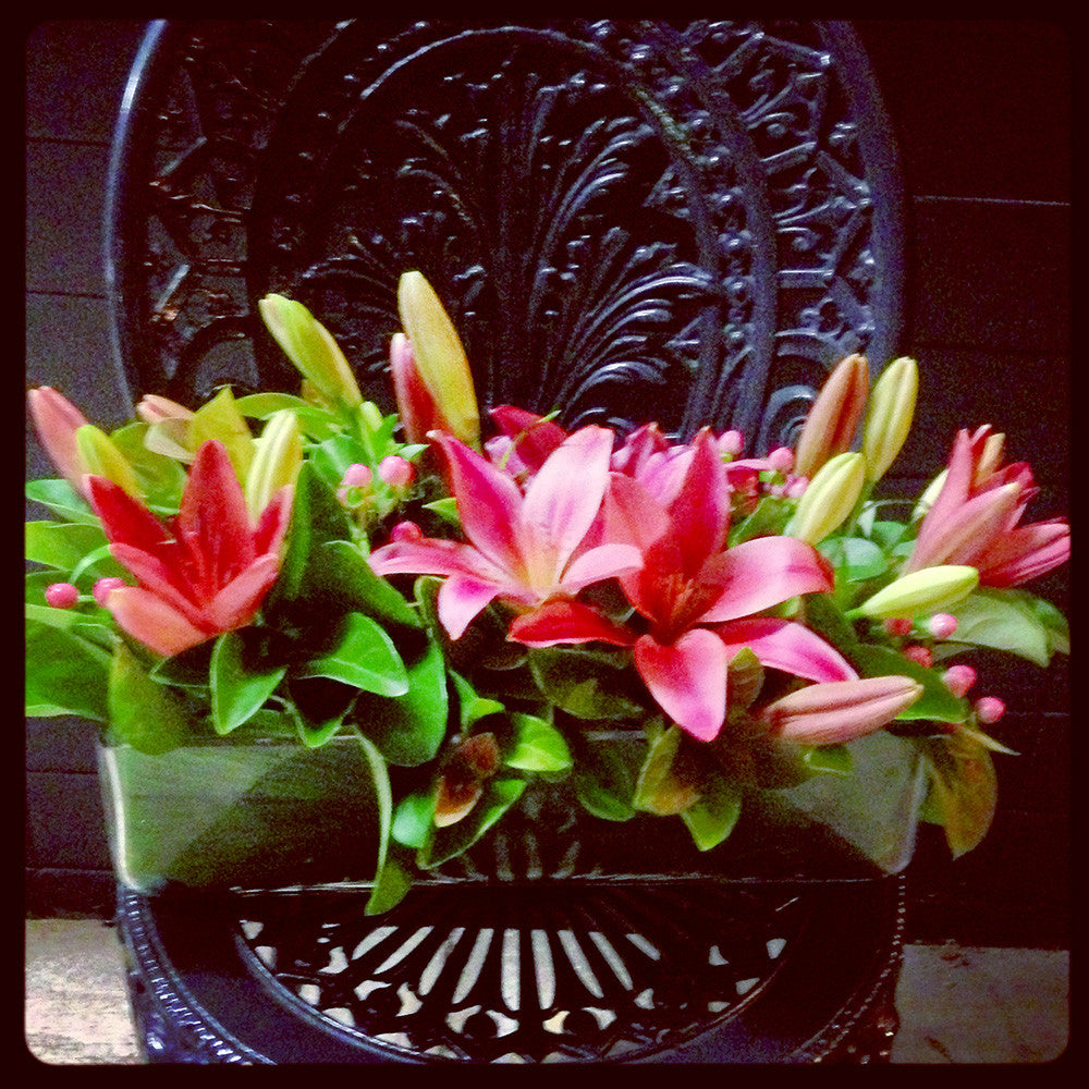 Pink Tropical in Vase