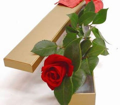 1 ~ Single Stem Red Rose - Boxed
