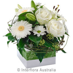 Hope Flower Arrangement in a Box