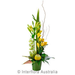 Radiance Arrangement with Ceramic Vase