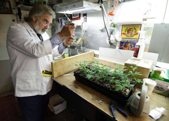 Scientist in a lab running tests on plants