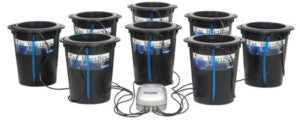 8-bucket deep water culture (DWC) hydroponic grow room system.