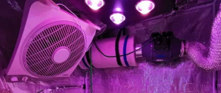 Cooling, ducting, and temp control in an indoor grow tent.