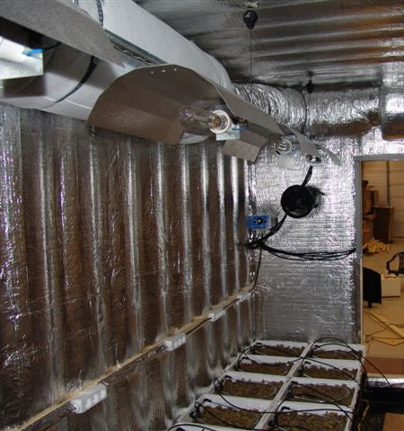 An indoor hydroponic grow room setup with HPS grow lights and reflective mylar walls.