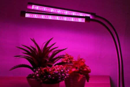 LED grow lamps for indoor houseplants.