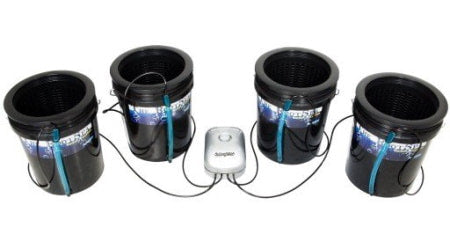 Root Spa 5 Gal 4 DWC Bucket System for indoor grow rooms and grow tents.