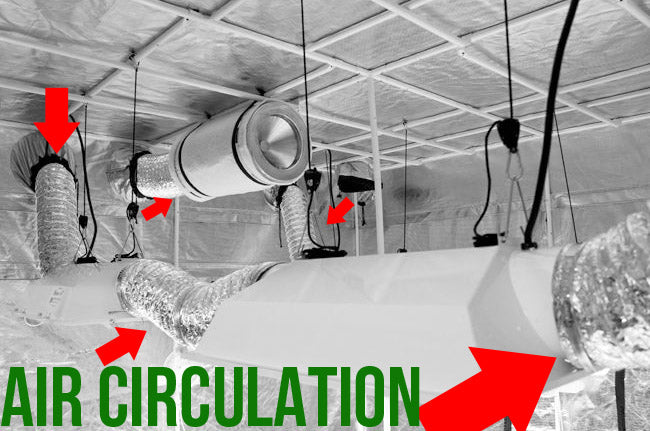 The air circulation inside of an indoor grow tent, complete with high output fans and carbon filters.