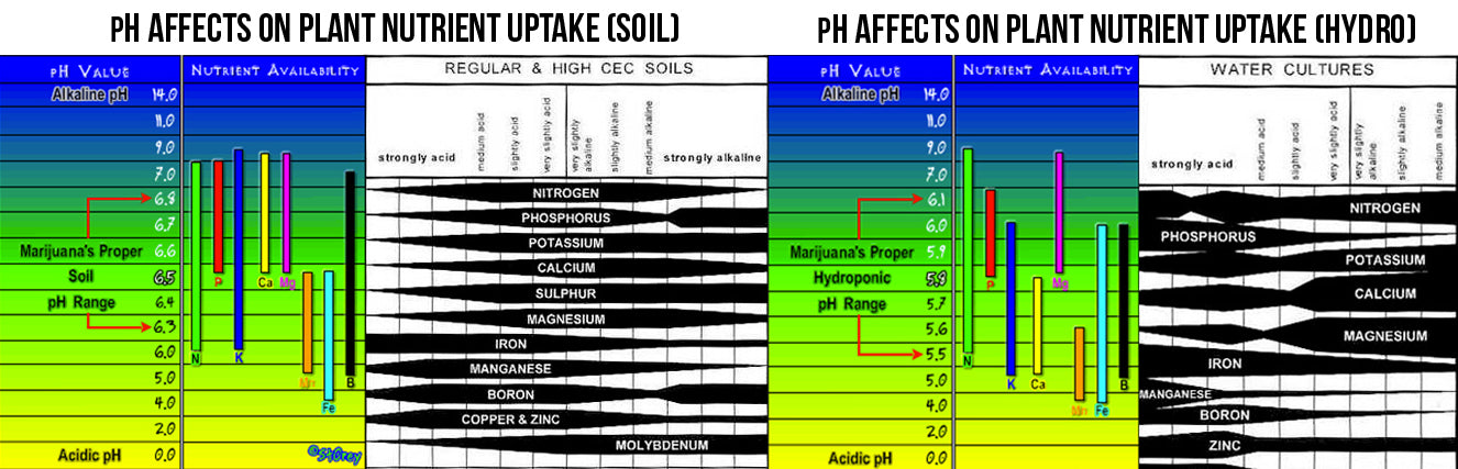 A guide to the appropriate and optimal pH levels your plants should be receiving.