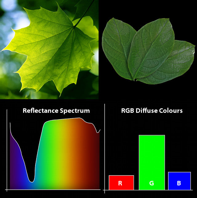 Spectrum and Defuse Colors
