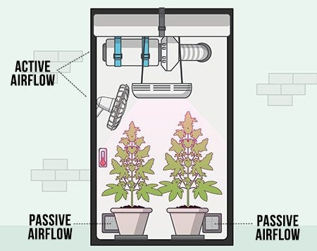 This shows how active air and passive air works within a grow tent.