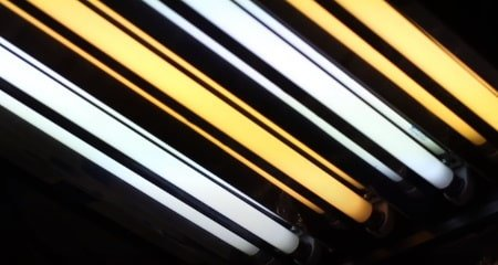 This is a picture of illuminated T5 grow light bulbs.