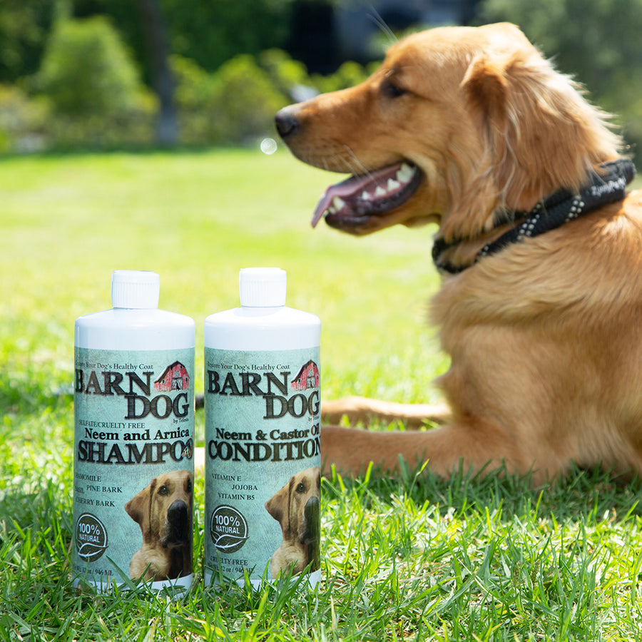 For the Love of Dogs:  Neem Shampoo & Conditioner - Equiderma | Natural Horse Care | Pet Care Products  - Equiderma