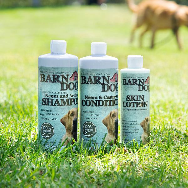 For the Love of Dogs:  Dream Team Power Combo - Equiderma | Natural Horse Care | Pet Care Products  - Equiderma
