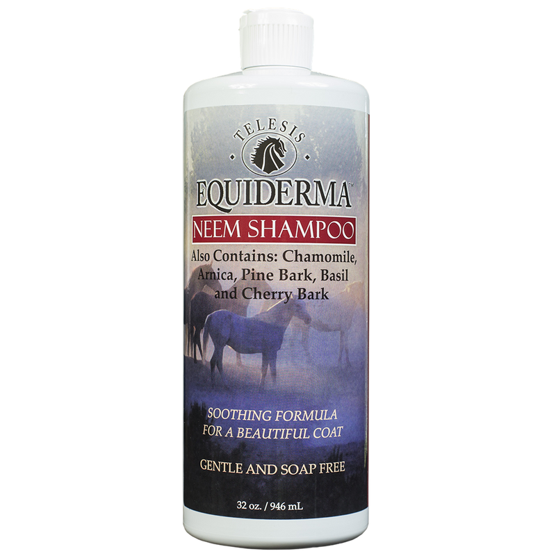 Sulfate Free Neem & Arnica Shampoo for Horses