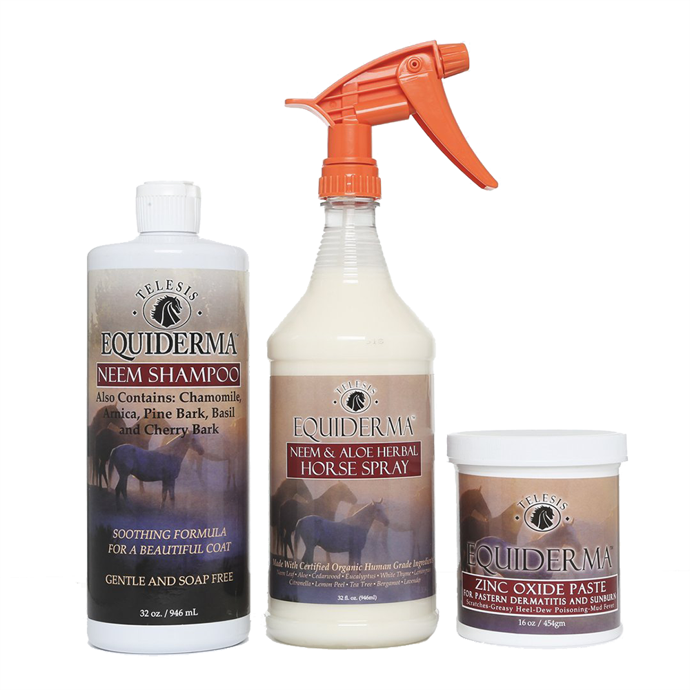 Neem Shampoo , Zinc Paste & Horse Spray Combo