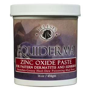 Zinc Oxide Paste for Pastern Dermatitis & Sunburn