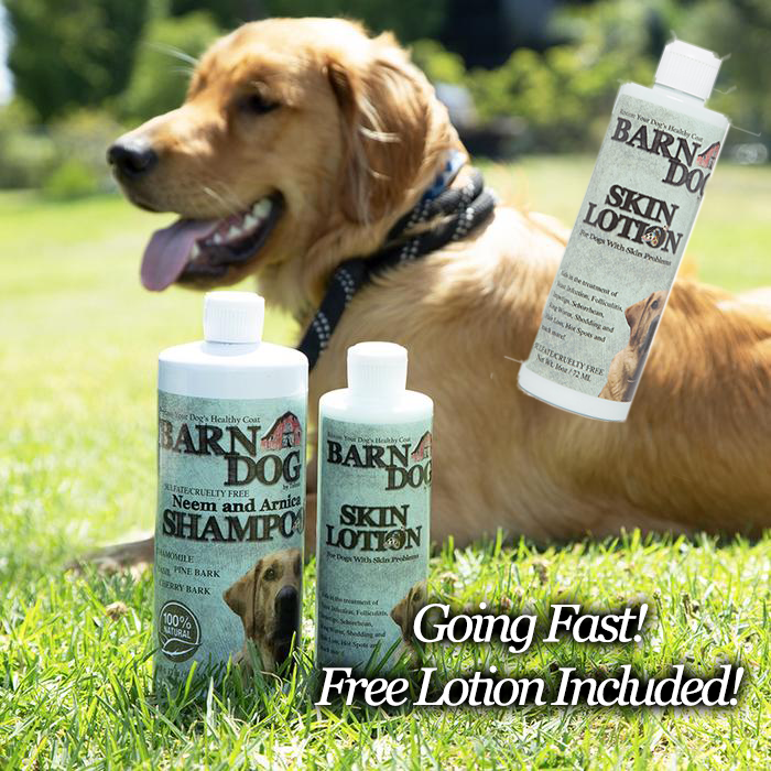 Buy a Barn Dog Shampoo and Lotion Healing Kit, get another Lotion for FREE!