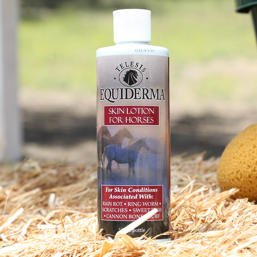 Skin Lotion for Horses with Skin Problems