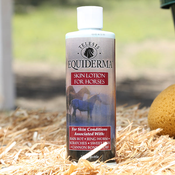 Equiderma Skin Lotion For Horses With Skin Conditions