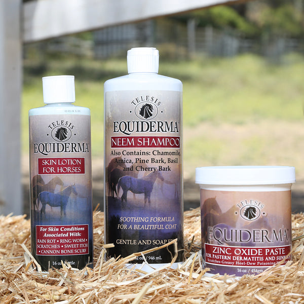 Equiderma:  Neem Shampoo, Skin Lotion & Zinc Paste Power Pack - Equiderma | Natural Horse Care | Pet Care Products  - Equiderma