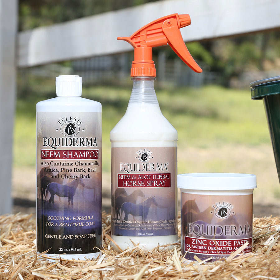 Equiderma:  Neem Shampoo, Zinc Paste & Outdoor Spray - Equiderma | Natural Horse Care | Pet Care Products  - Equiderma