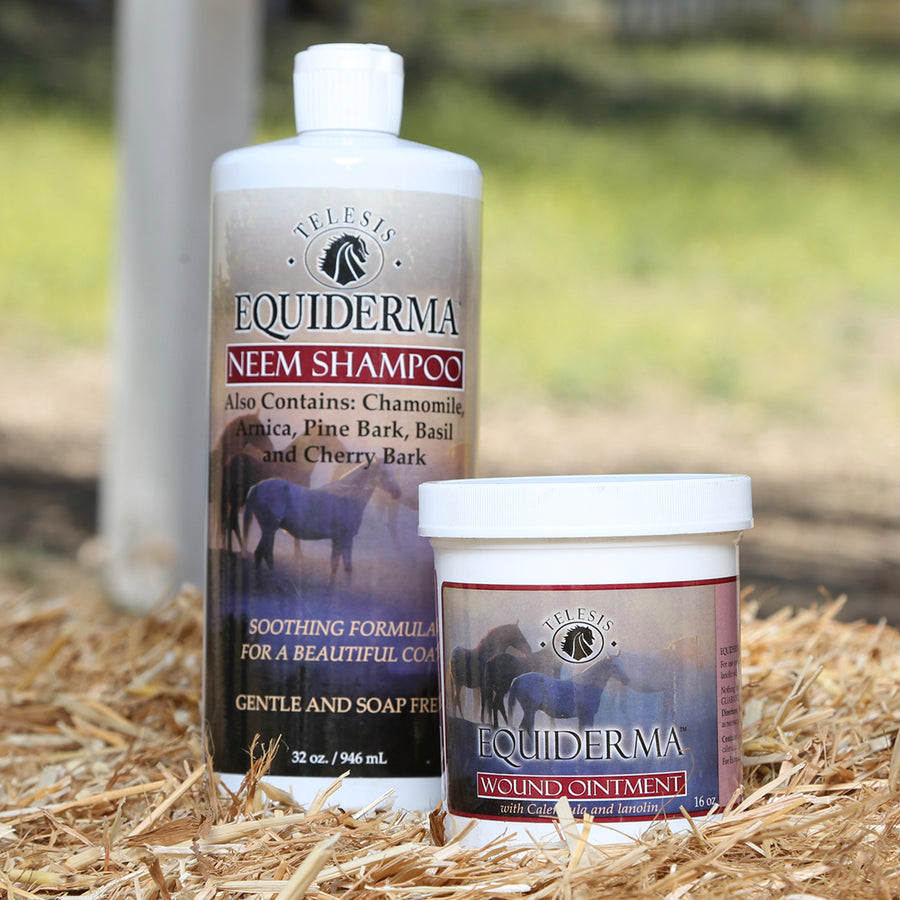 Equiderma:  Neem Shampoo and Calendula & Neem Wound Ointment for Horses - Equiderma | Natural Horse Care | Pet Care Products  - Equiderma